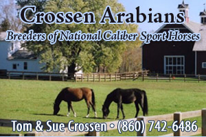 Crosson Arabians