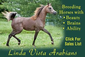 Linda Vista Arabians